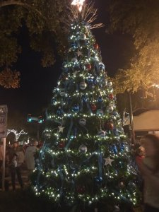 Spark the Spirit @ Christmas Park | New Smyrna Beach | Florida | United States